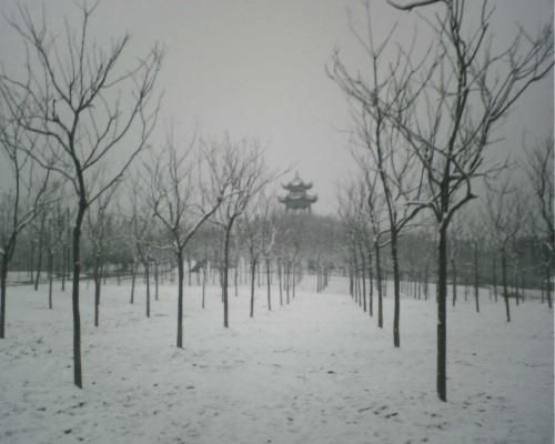 雪中的小树林和渔夫子亭————被v
