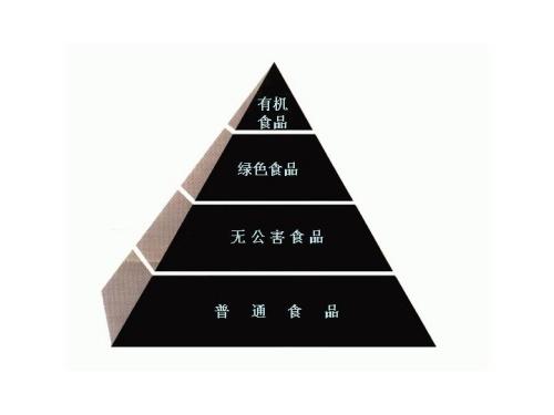 金字塔安全等级小图标