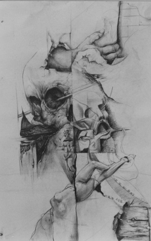 狼铅笔手绘画