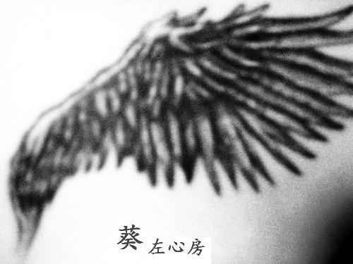 单翼翅膀图腾纹身图案