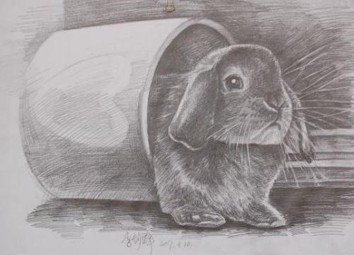 动物素描图片步骤