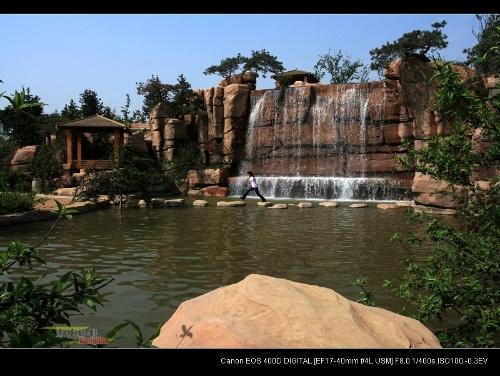 """植物园看风景(附""""摄影构图体会"""")-寒塘鹤影-我的搜狐"""